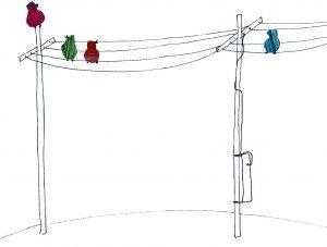 birds on elektricity