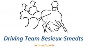 Logo paarden team